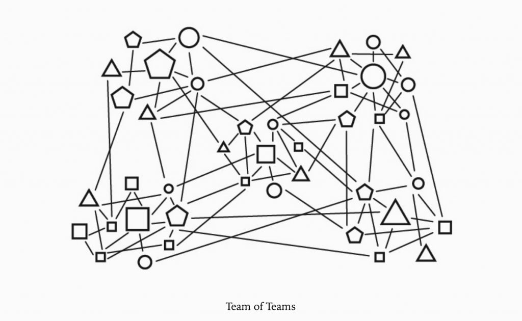 Team of Teams Structure